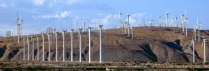 Wind Farm- Palm Springs
